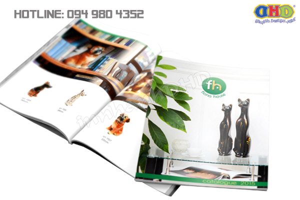 in-brochure-gia-re